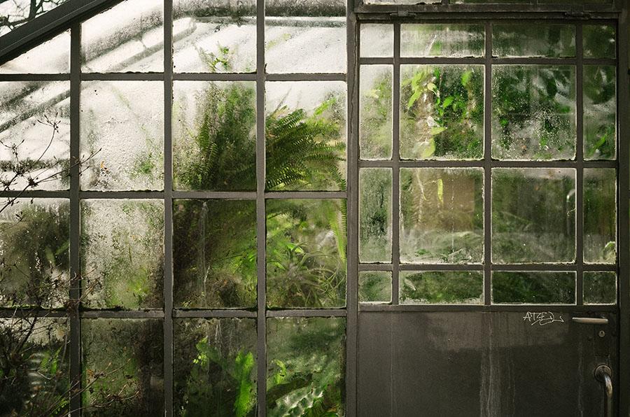 Czyszczenie mebli w ogrodzie zimowym – skutecznie i bezpiecznie?