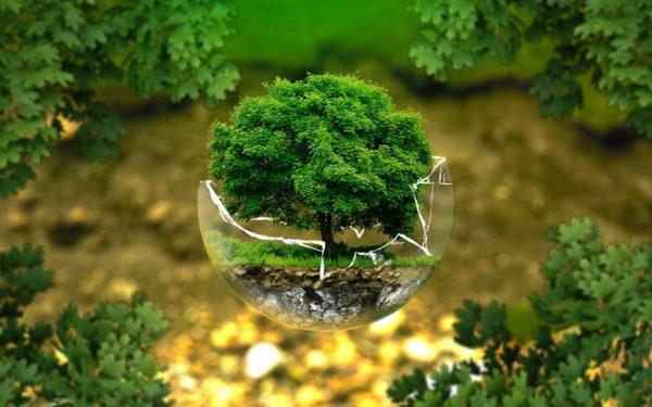 Jak pakować ekologicznie i zapewniając ochronę zawartości?